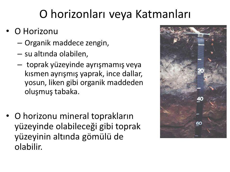 O horizonları veya Katmanları O Horizonu – Organik maddece zengin, – su altında olabilen, – toprak yüzeyinde ayrışmamış veya kısmen ayrışmış yaprak, i