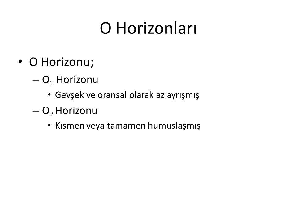A Horizonları O Horizonunun altında oluşmuş mineral bir horizondur A horizonları – Fazla miktarda OM kapsayan mineral madde katmanlarından – Kil demir ve alüminyum oksitlerin yıkanarak ayrıldığı – Toprak işleme, farklı arazi kullanımı veya bozulma sonucu ortaya çıkan özellikleri içeren katmanlardır.