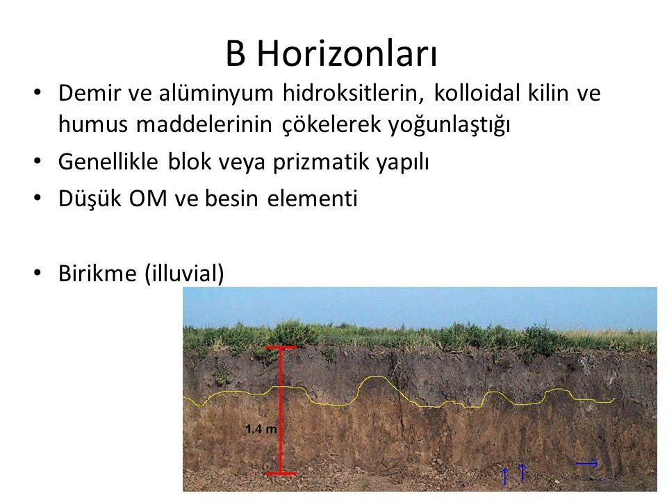 B horizonları B 1 – A dan B ye geçit horizonu B 2 – Demir ve alüminyum hidroksitlerin, kolloidal kilin ve humus maddelerinin en fazla biriktiği – Blok veya prizmatik yapının en belirgin görüldüğü – Humusca zengin ise B 21, kil ve demir alüminyum hidroksitlerince zengin ise B 22 B 3 – Geçit horizonu