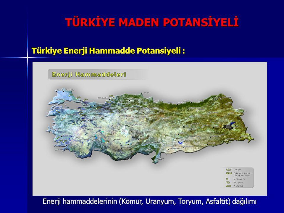 TÜRKİYE MADEN POTANSİYELİ Türkiye Enerji Hammadde Potansiyeli : Enerji hammaddelerinin (Kömür, Uranyum, Toryum, Asfaltit) dağılımı