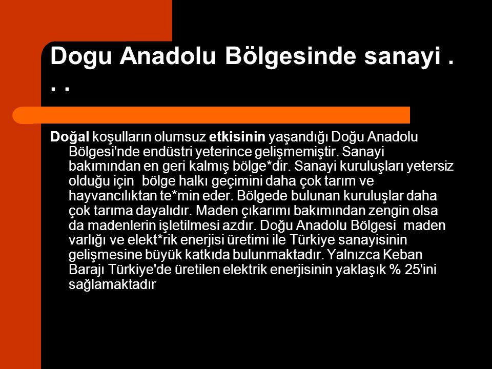 Dogu Anadolu Bölgesinde sanayi... Doğal koşulların olumsuz etkisinin yaşandığı Doğu Anadolu Bölgesi'nde endüstri yeterince gelişmemiştir. Sanayi bakım