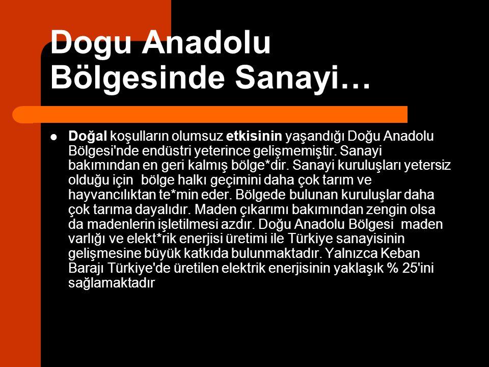 Dogu Anadolu Bölgesinde Sanayi… Doğal koşulların olumsuz etkisinin yaşandığı Doğu Anadolu Bölgesi'nde endüstri yeterince gelişmemiştir. Sanayi bakımın