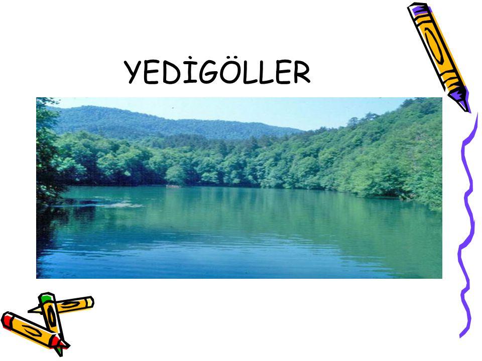 YEDİGÖLLER
