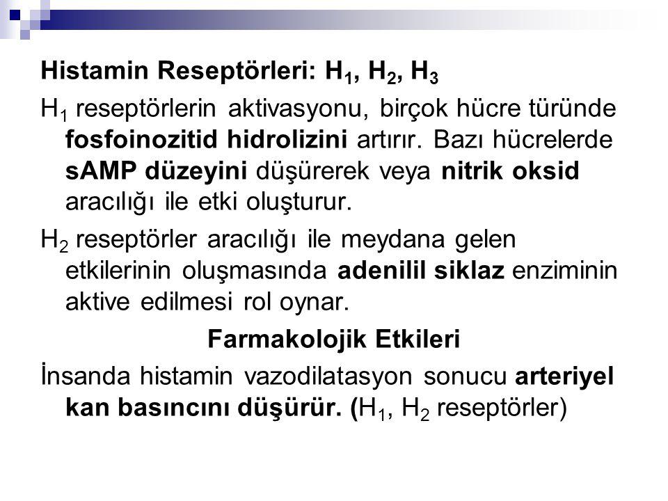 Histamin Reseptörleri: H 1, H 2, H 3 H 1 reseptörlerin aktivasyonu, birçok hücre türünde fosfoinozitid hidrolizini artırır. Bazı hücrelerde sAMP düzey
