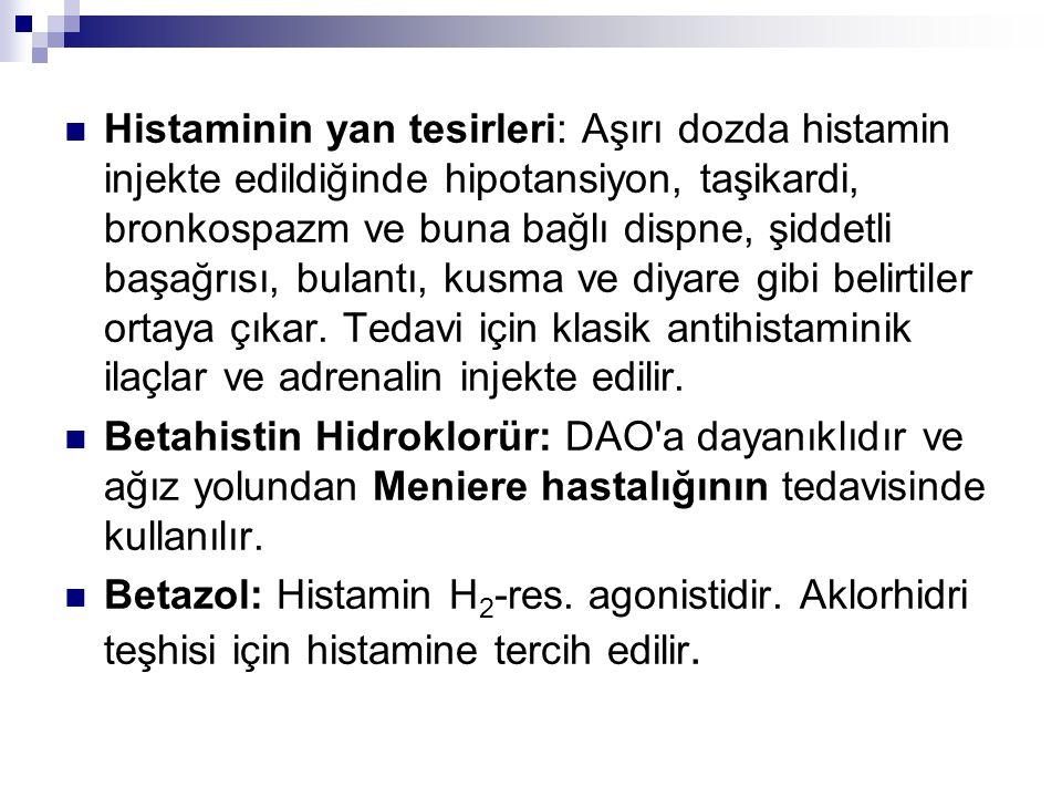 I.Histamin H 1 Reseptör Blokörleri: Bunlara klasik antihistaminikler denilir.