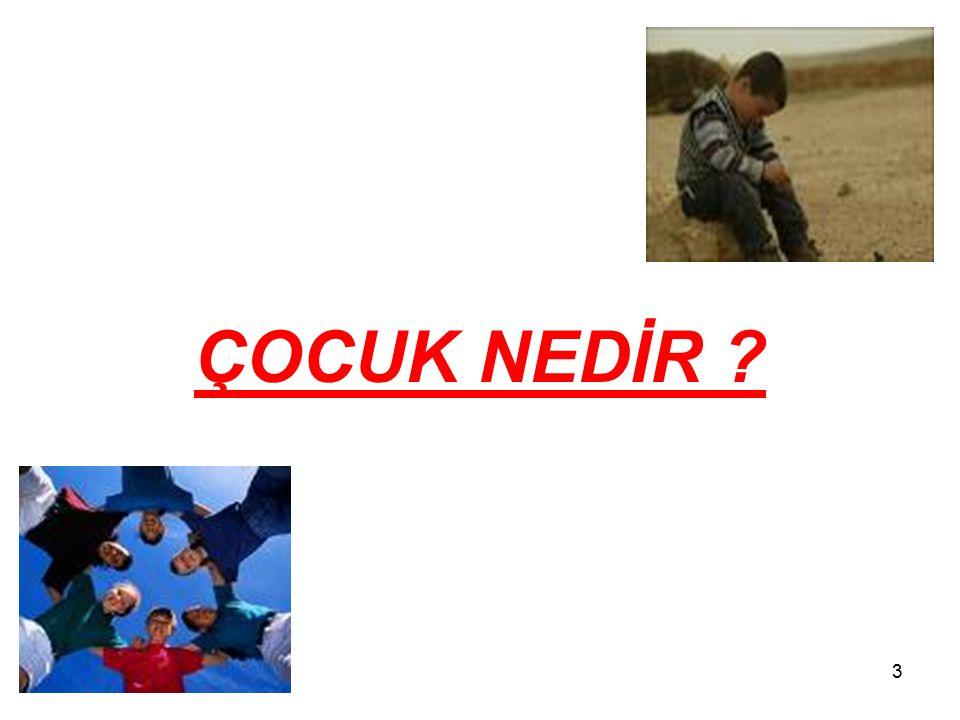54 Çocuğu İstismar Edenlerin Hukuki Sorumluluğu Türk Hukuk Sisteminde Çocukların Korunmasına dair düzenlemeler tek bir başlık altında toplanmamıştır.