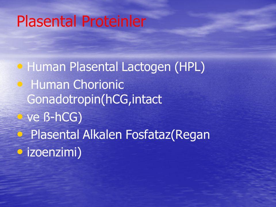 Plasental Proteinler Human Plasental Lactogen (HPL) Human Chorionic Gonadotropin(hCG,intact ve ß-hCG) Plasental Alkalen Fosfataz(Regan izoenzimi)