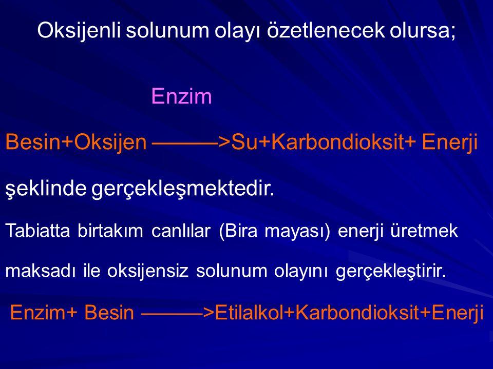 Oksijenli solunum olayı özetlenecek olursa; Enzim Besin+Oksijen ———>Su+Karbondioksit+ Enerji şeklinde gerçekleşmektedir.