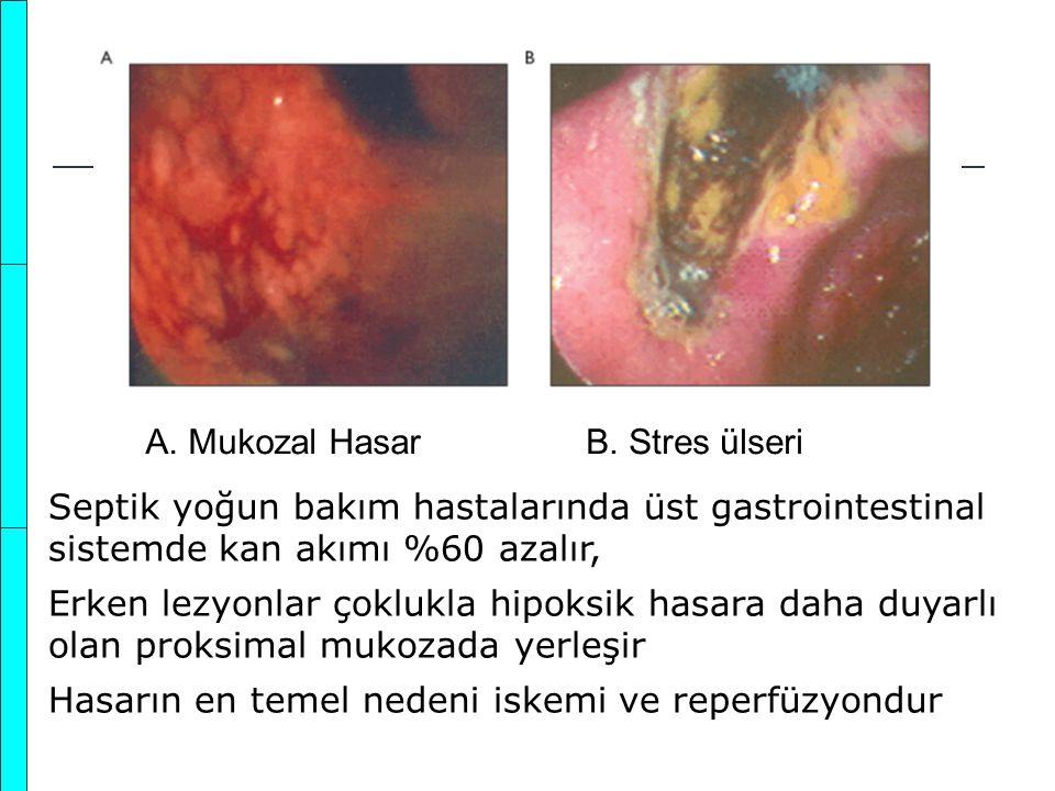 A. Mukozal HasarB. Stres ülseri Septik yoğun bakım hastalarında üst gastrointestinal sistemde kan akımı %60 azalır, Erken lezyonlar çoklukla hipoksik