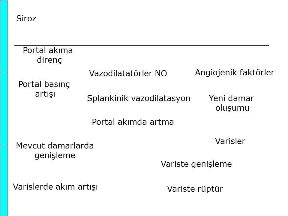 Siroz Portal akıma direnç Portal basınç artışı Vazodilatatörler NO Splankinik vazodilatasyon Portal akımda artma Angiojenik faktörler Yeni damar oluşu