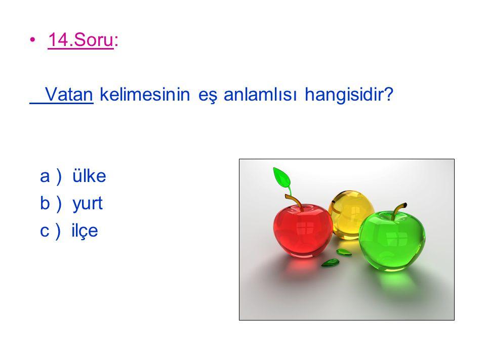 14.Soru: Vatan kelimesinin eş anlamlısı hangisidir? a ) ülke b ) yurt c ) ilçe