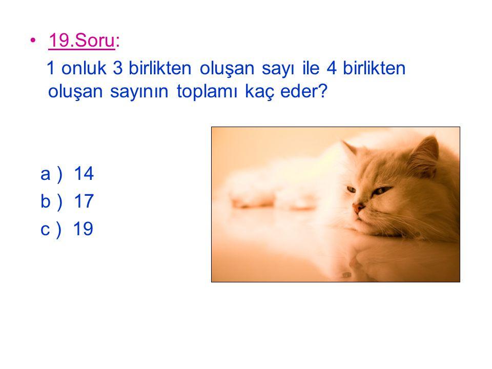 19.Soru: 1 onluk 3 birlikten oluşan sayı ile 4 birlikten oluşan sayının toplamı kaç eder? a ) 14 b ) 17 c ) 19