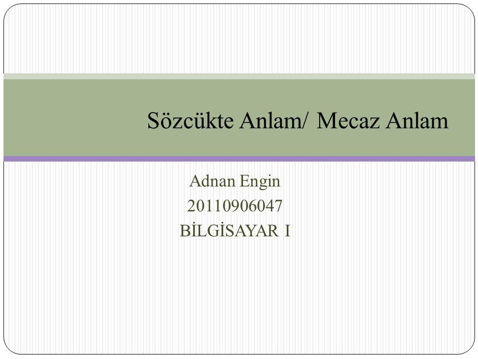 Adnan Engin 20110906047 BİLGİSAYAR I Sözcükte Anlam/ Mecaz Anlam
