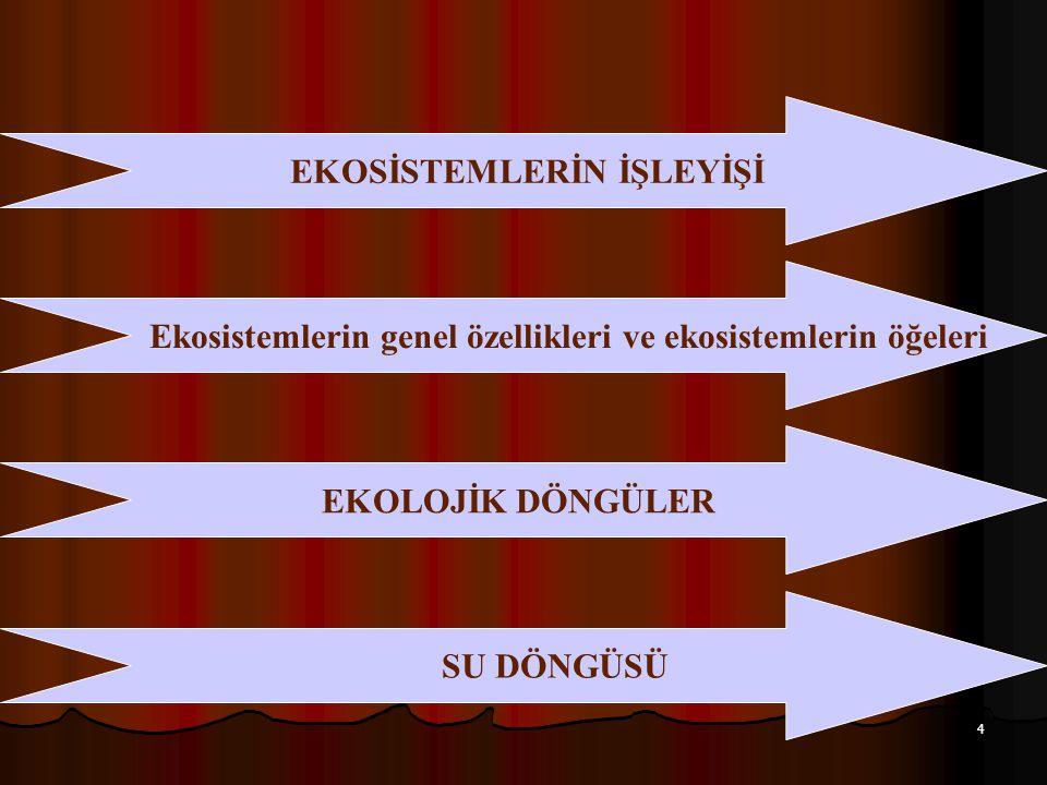35 Türkiye ve Dünyada gıda tüketimi (gr.