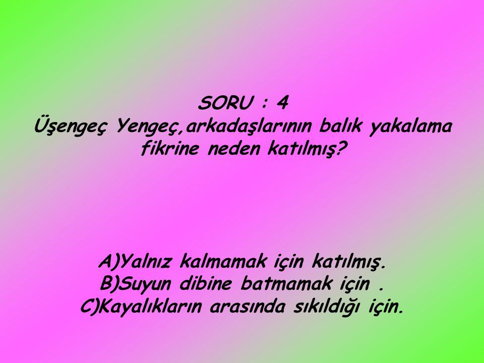 SORU : 4 Üşengeç Yengeç,arkadaşlarının balık yakalama fikrine neden katılmış? A)Yalnız kalmamak için katılmış. B)Suyun dibine batmamak için. C)Kayalık