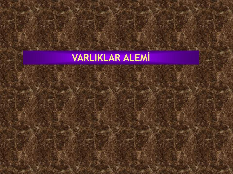 VARLIKLAR ALEMİ