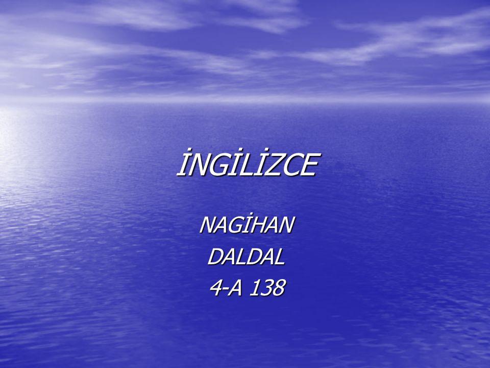 İNGİLİZCE NAGİHANDALDAL 4-A 138