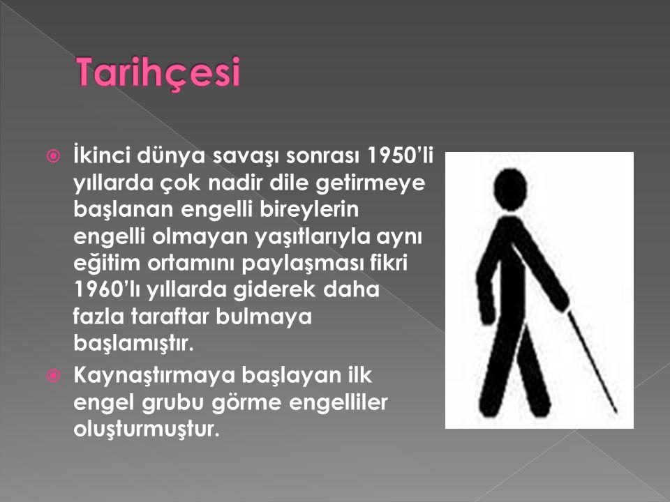  İkinci dünya savaşı sonrası 1950'li yıllarda çok nadir dile getirmeye başlanan engelli bireylerin engelli olmayan yaşıtlarıyla aynı eğitim ortamını paylaşması fikri 1960'lı yıllarda giderek daha fazla taraftar bulmaya başlamıştır.