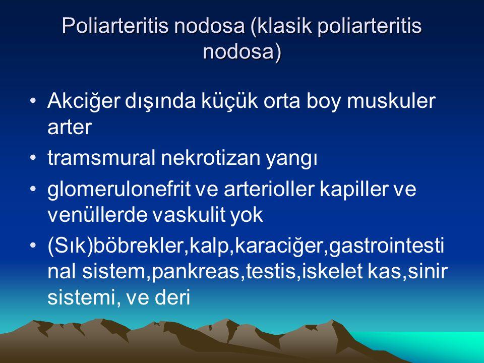 Poliarteritis nodosa (klasik poliarteritis nodosa) Akciğer dışında küçük orta boy muskuler arter tramsmural nekrotizan yangı glomerulonefrit ve arterioller kapiller ve venüllerde vaskulit yok (Sık)böbrekler,kalp,karaciğer,gastrointesti nal sistem,pankreas,testis,iskelet kas,sinir sistemi, ve deri