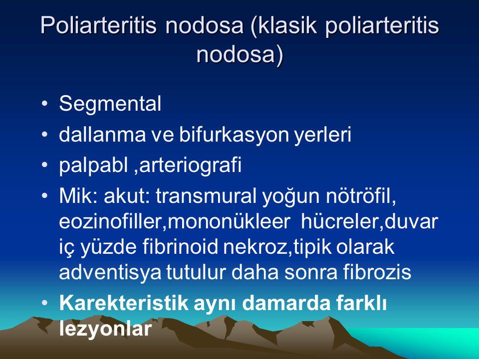Poliarteritis nodosa (klasik poliarteritis nodosa) Segmental dallanma ve bifurkasyon yerleri palpabl,arteriografi Mik: akut: transmural yoğun nötröfil
