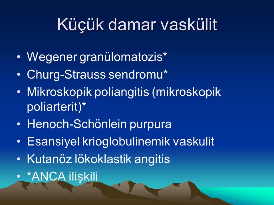 Küçük damar vaskülit Wegener granülomatozis* Churg-Strauss sendromu* Mikroskopik poliangitis (mikroskopik poliarterit)* Henoch-Schönlein purpura Esans