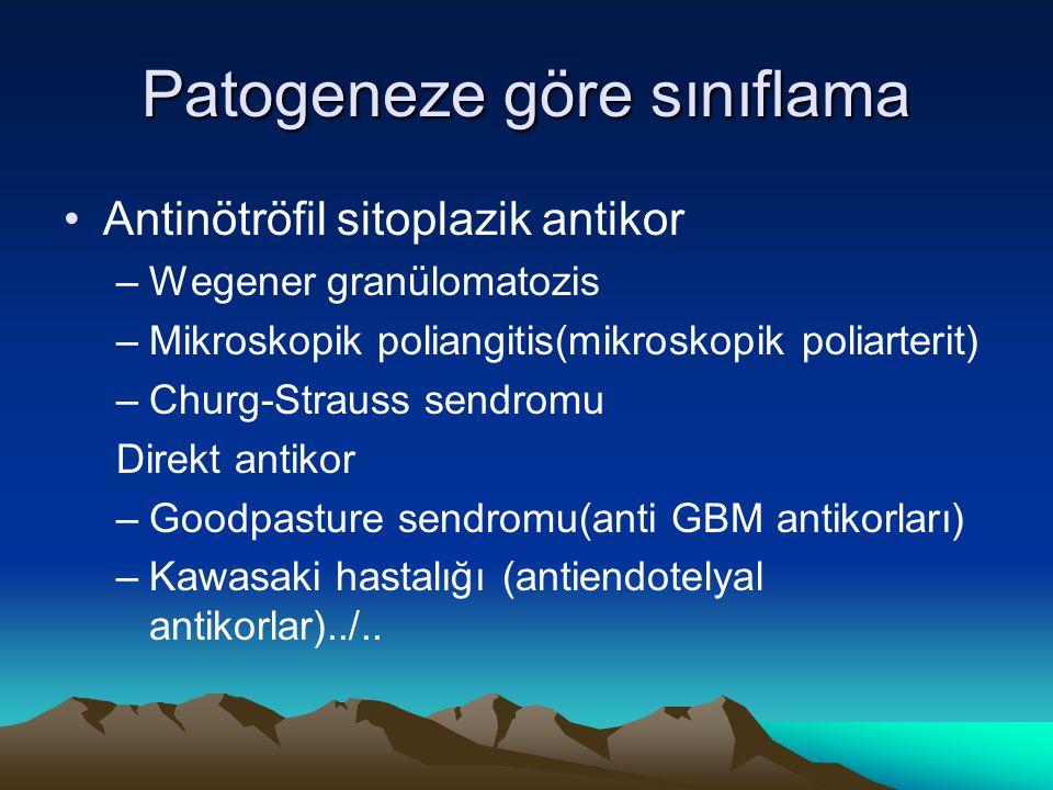 Patogeneze göre sınıflama Antinötröfil sitoplazik antikor –Wegener granülomatozis –Mikroskopik poliangitis(mikroskopik poliarterit) –Churg-Strauss sen