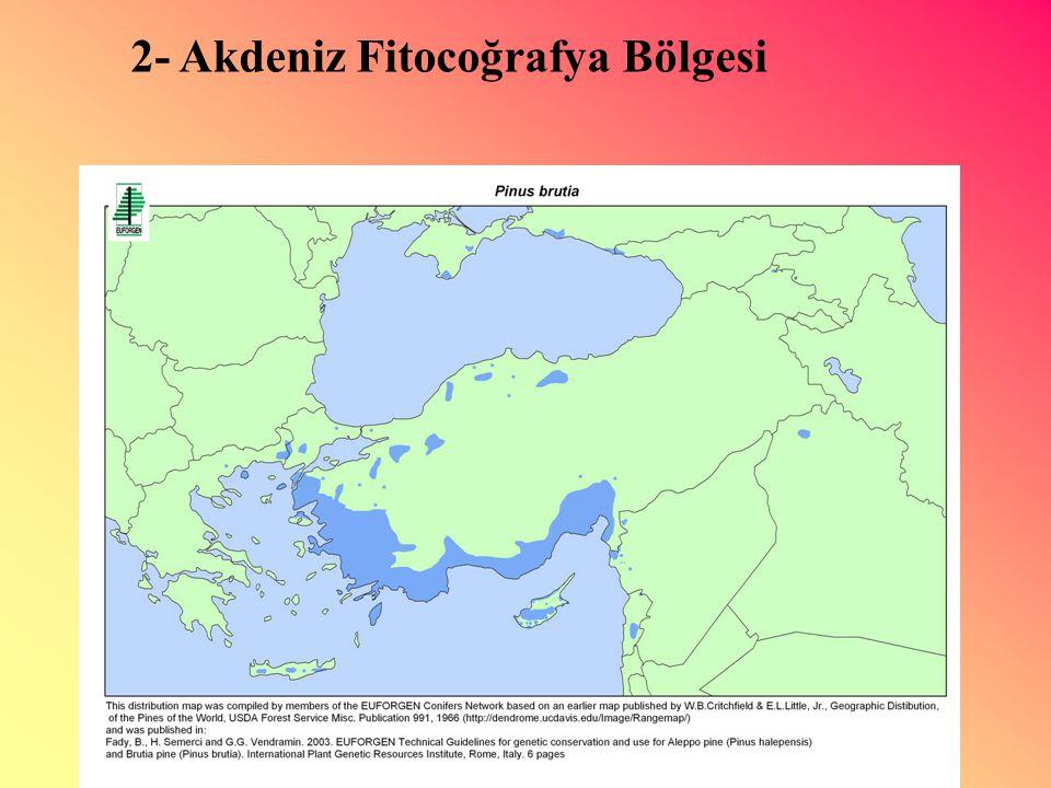 2- Akdeniz Fitocoğrafya Bölgesi