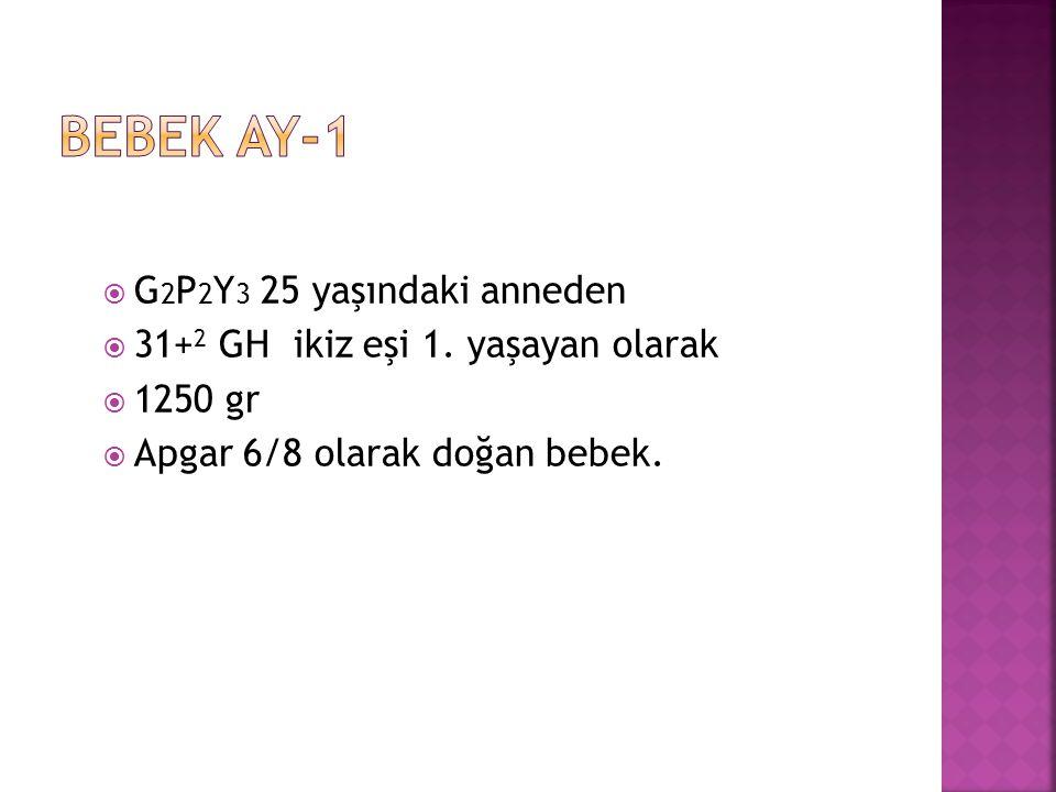  G 2 P 2 Y 3 25 yaşındaki anneden  31+ 2 GH ikiz eşi 1.