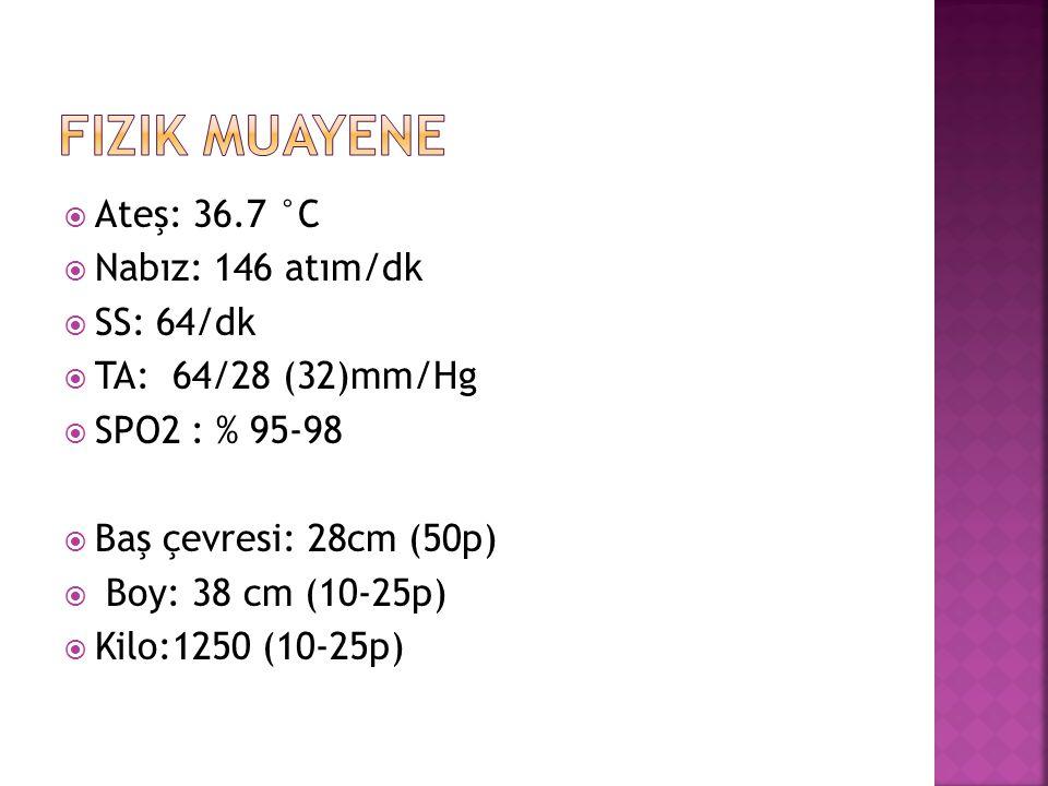  Ateş: 36.7 °C  Nabız: 146 atım/dk  SS: 64/dk  TA: 64/28 (32)mm/Hg  SPO2 : % 95-98  Baş çevresi: 28cm (50p)  Boy: 38 cm (10-25p)  Kilo:1250 (10-25p)