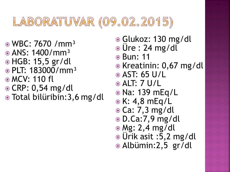  WBC: 7670 /mm³  ANS: 1400/mm³  HGB: 15,5 gr/dl  PLT: 183000/mm³  MCV: 110 fl  CRP: 0,54 mg/dl  Total bilüribin:3,6 mg/dl  Glukoz: 130 mg/dl  Üre : 24 mg/dl  Bun: 11  Kreatinin: 0,67 mg/dl  AST: 65 U/L  ALT: 7 U/L  Na: 139 mEq/L  K: 4,8 mEq/L  Ca: 7,3 mg/dl  D.Ca:7,9 mg/dl  Mg: 2,4 mg/dl  Ürik asit :5,2 mg/dl  Albümin:2,5 gr/dl