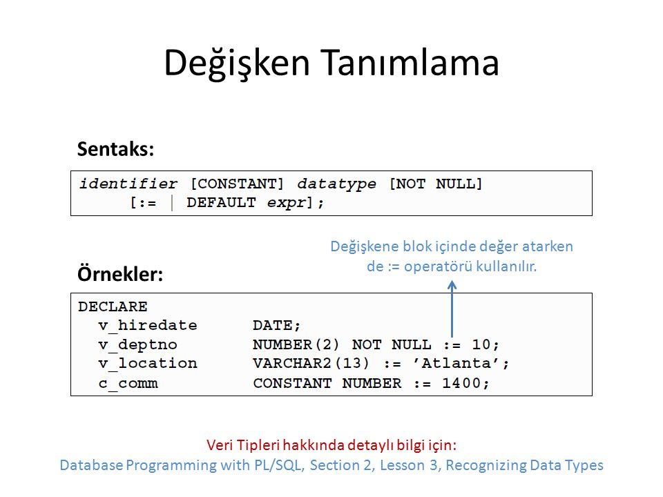 Değişken Tanımlama Değişkene blok içinde değer atarken de := operatörü kullanılır. Sentaks: Örnekler: Veri Tipleri hakkında detaylı bilgi için: Databa