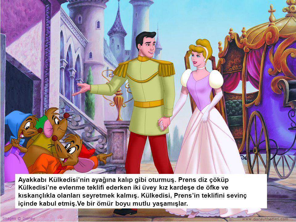 Ayakkabı Külkedisi'nin ayağına kalıp gibi oturmuş. Prens diz çöküp Külkedisi'ne evlenme teklifi ederken iki üvey kız kardeşe de öfke ve kıskançlıkla o