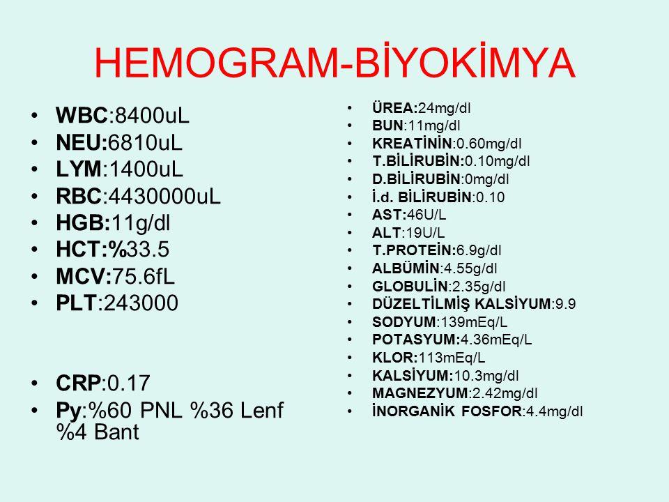 KAN GAZLARI pH:7.395 pCO2:32.2mmHg cHCO3:19.3mmol/L