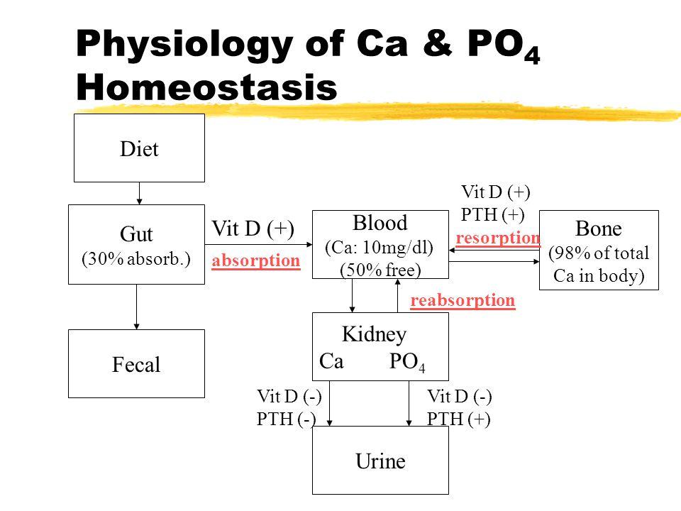 PRİMER HİPERPARATİROİDİZM zKontrolsüz PTH salınımı ile giden Ca, P, kemik metabolizması bozukluğudur.