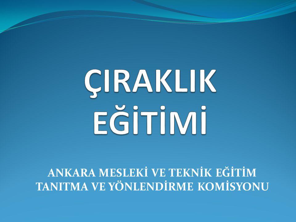 Türkiye'de Çıraklık Eğitimi ve Önemi