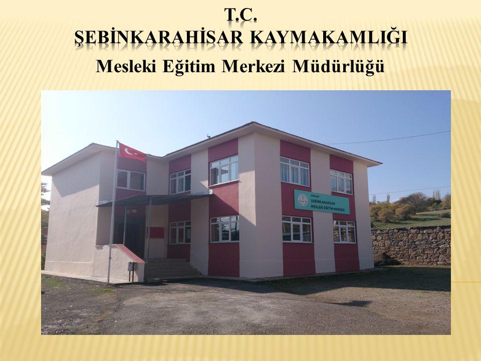 Merkezimiz, ilk defa 1987 yılında Şebinkarahisar Endüstri Meslek Lisesi Müdürlüğü bünyesinde iki yıl büro şeklinde kalfa ve usta adaylarına belge vererek faaliyetini sürdürmüştür.