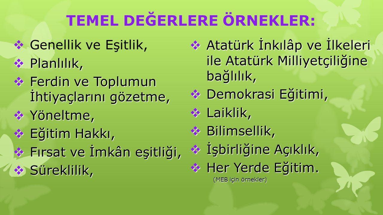  Atatürk İnkılâp ve İlkeleri ile Atatürk Milliyetçiliğine bağlılık,  Demokrasi Eğitimi,  Laiklik,  Bilimsellik,  İşbirliğine Açıklık,  Her Yerde