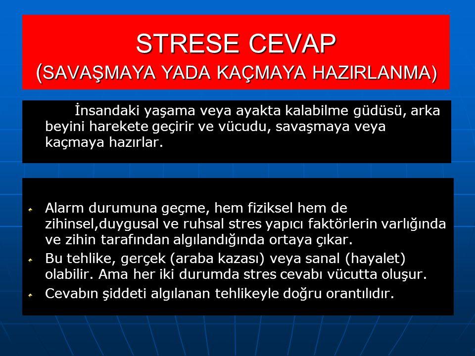 STRESE CEVAP ( SAVAŞMAYA YADA KAÇMAYA HAZIRLANMA) İnsandaki yaşama veya ayakta kalabilme güdüsü, arka beyini harekete geçirir ve vücudu, savaşmaya veya kaçmaya hazırlar.