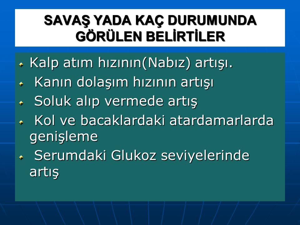 BİZİ NELER KAYGILANDIRIR .