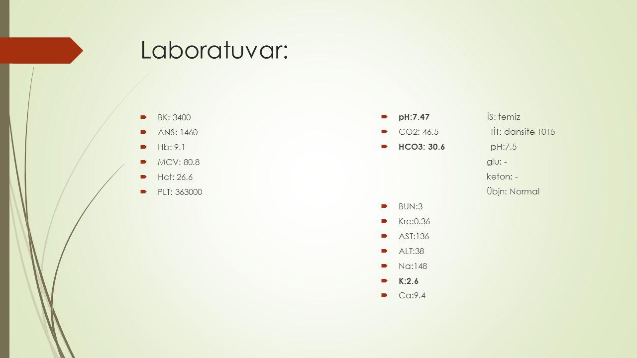 Laboratuvar:  BK: 3400  ANS: 1460  Hb: 9.1  MCV: 80.8  Hct: 26.6  PLT: 363000  pH:7.47 İS: temiz  CO2: 46.5 TİT: dansite 1015  HCO3: 30.6 pH: