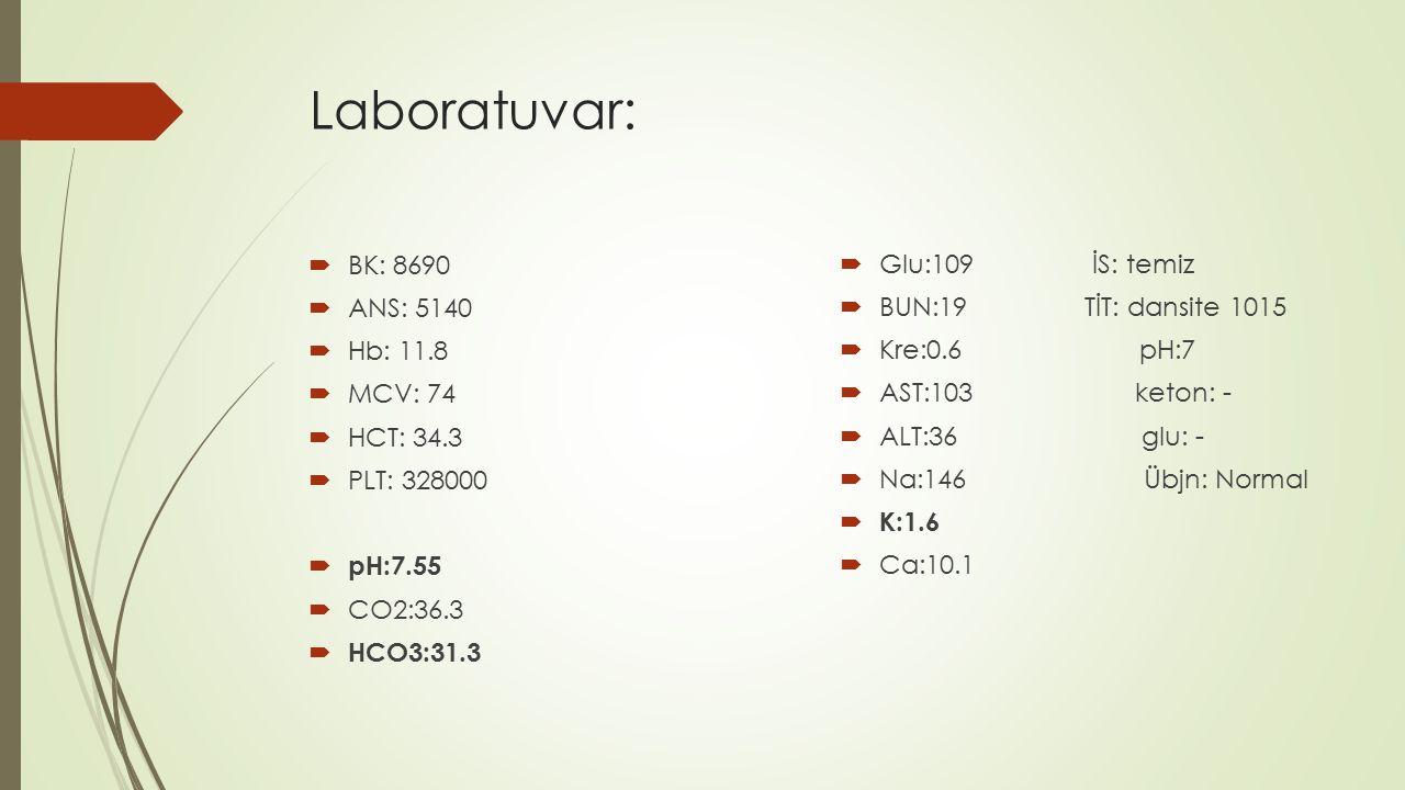 Laboratuvar:  BK: 8690  ANS: 5140  Hb: 11.8  MCV: 74  HCT: 34.3  PLT: 328000  pH:7.55  CO2:36.3  HCO3:31.3  Glu:109 İS: temiz  BUN:19 TİT: