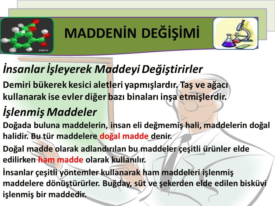 Yapay Maddeler Koyun, yılan, timsah vb.