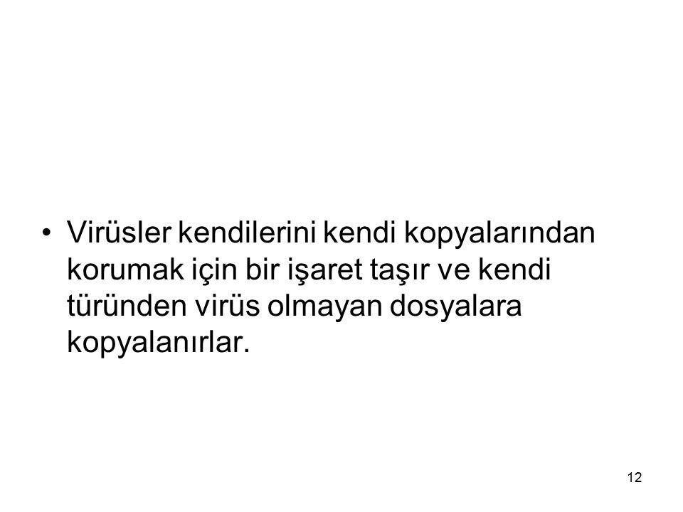 Virüsler kendilerini kendi kopyalarından korumak için bir işaret taşır ve kendi türünden virüs olmayan dosyalara kopyalanırlar. 12