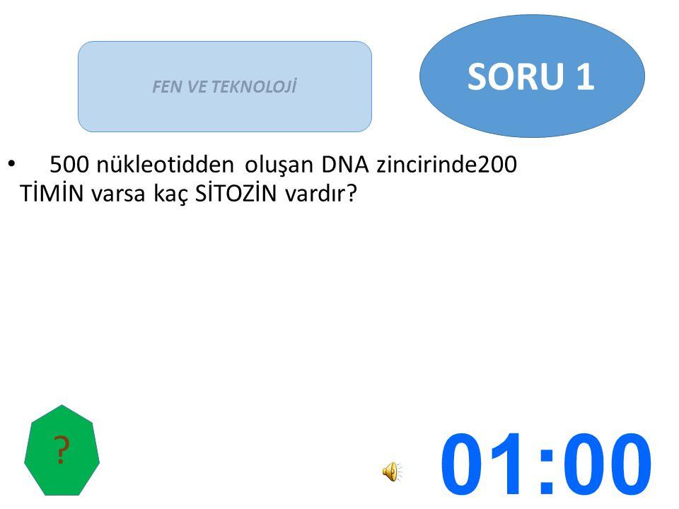 500 nükleotidden oluşan DNA zincirinde200 TİMİN varsa kaç SİTOZİN vardır? FEN VE TEKNOLOJİ SORU 1 ?