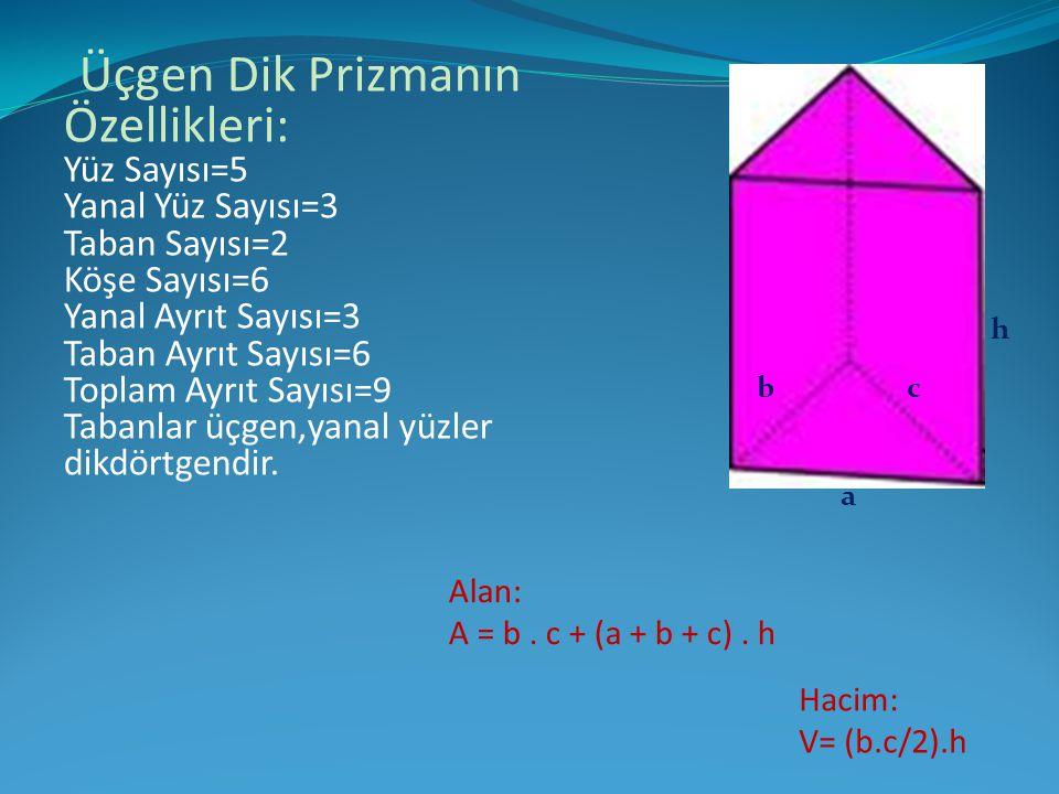 Üçgen Dik Prizmanın Özellikleri: Yüz Sayısı=5 Yanal Yüz Sayısı=3 Taban Sayısı=2 Köşe Sayısı=6 Yanal Ayrıt Sayısı=3 Taban Ayrıt Sayısı=6 Toplam Ayrıt S
