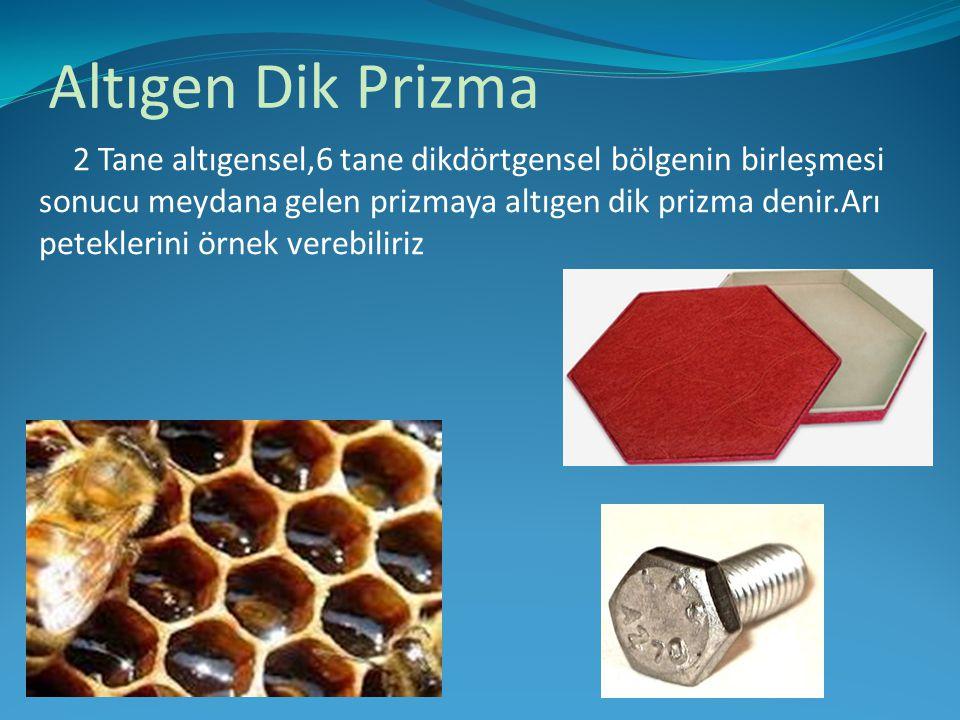 Altıgen Dik Prizma 2 Tane altıgensel,6 tane dikdörtgensel bölgenin birleşmesi sonucu meydana gelen prizmaya altıgen dik prizma denir.Arı peteklerini ö