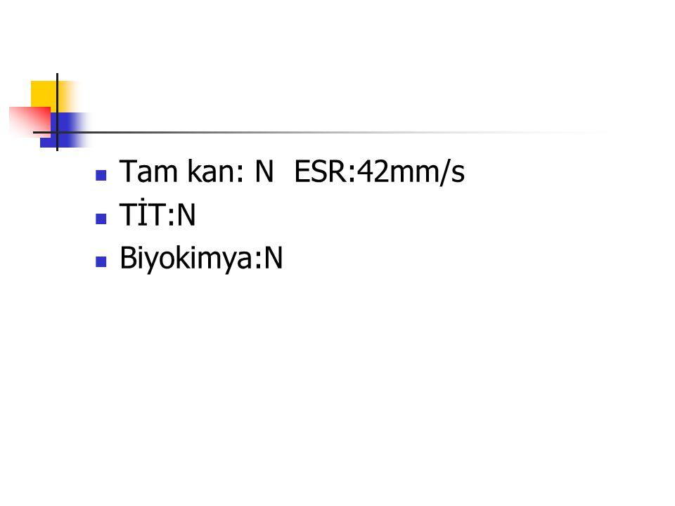 Tam kan: N ESR:42mm/s TİT:N Biyokimya:N