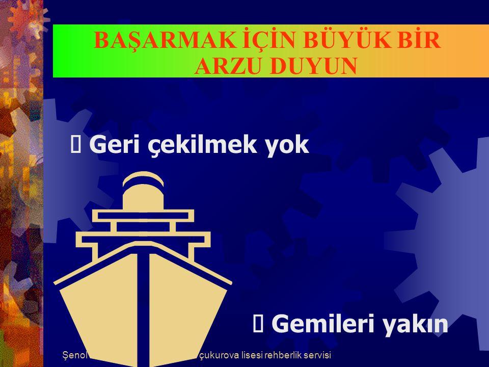 Şenol YİĞİTçukurova lisesi rehberlik servisi BAŞARININ DÖRT BASAMAĞI 1.