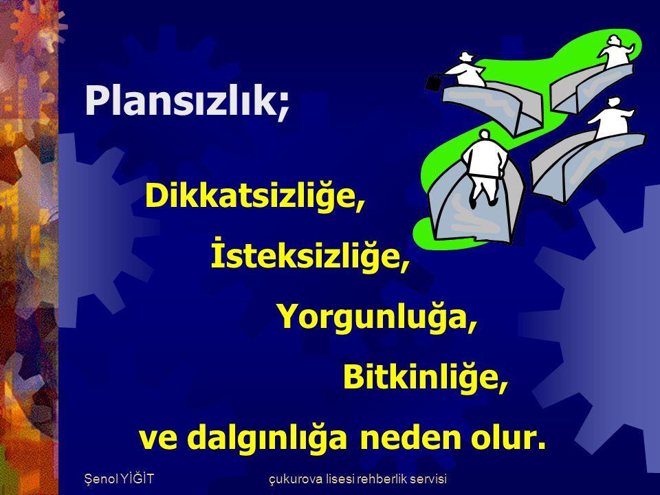 Şenol YİĞİTçukurova lisesi rehberlik servisi Plan Nedir.