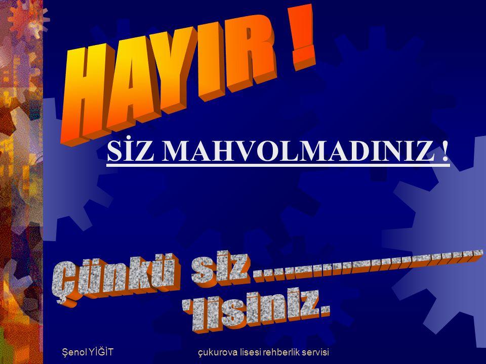 Şenol YİĞİTçukurova lisesi rehberlik servisi Çalışmaya Engel Faktörler BEN MAHVOLDUM !